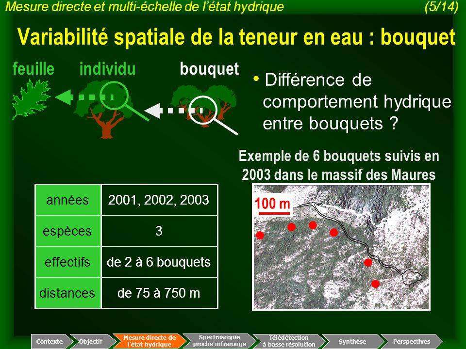 Variabilité spatiale de la teneur en eau : bouquet