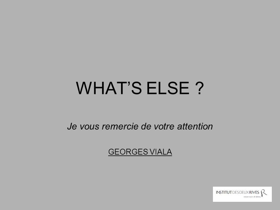 Je vous remercie de votre attention GEORGES VIALA
