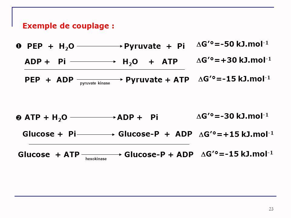Glucose + Pi Glucose-P + ADP G'°=+15 kJ.mol-1