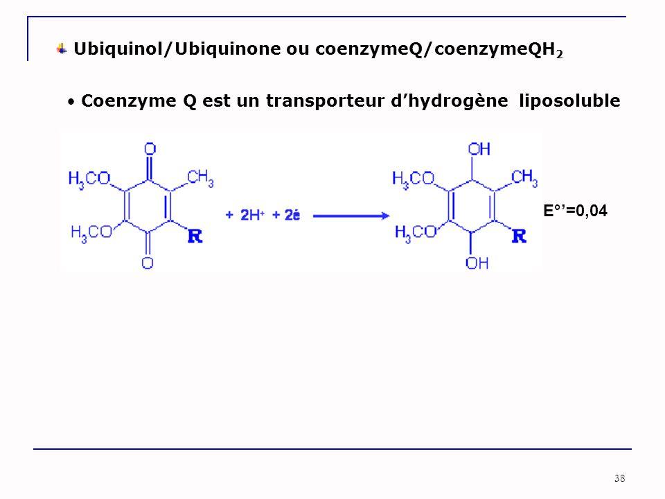 Ubiquinol/Ubiquinone ou coenzymeQ/coenzymeQH2