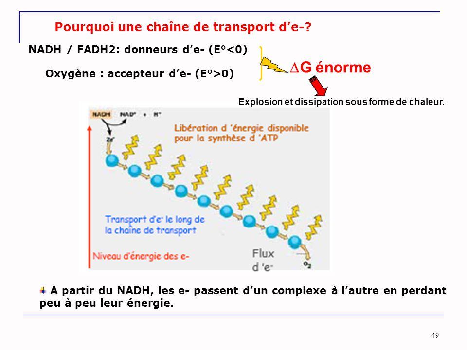 G énorme Pourquoi une chaîne de transport d'e-
