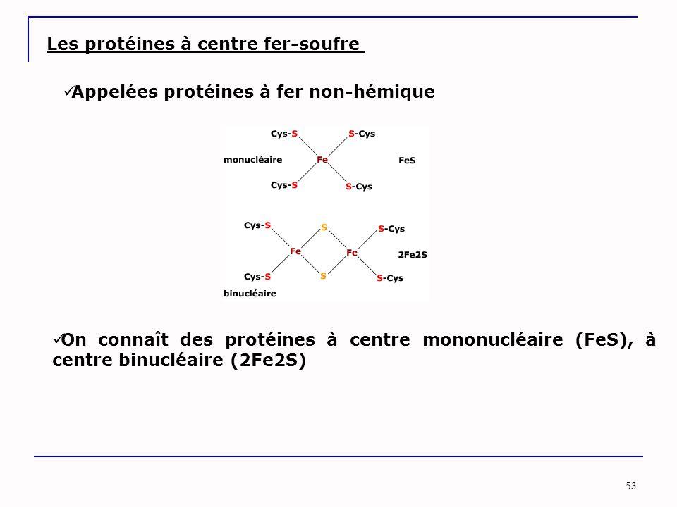 Les protéines à centre fer-soufre