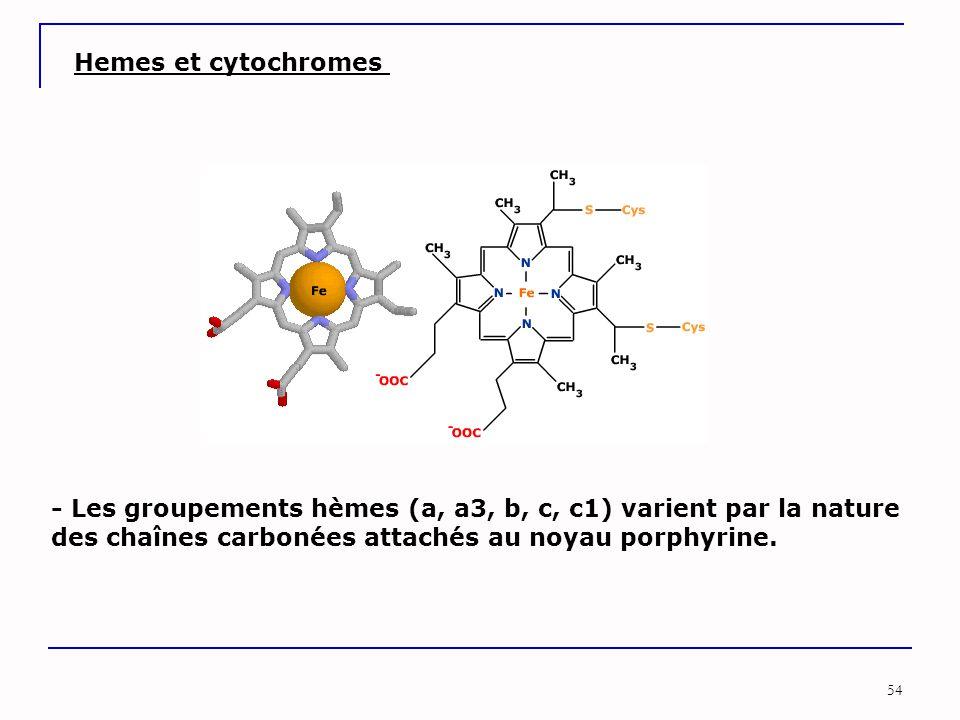 Hemes et cytochromes