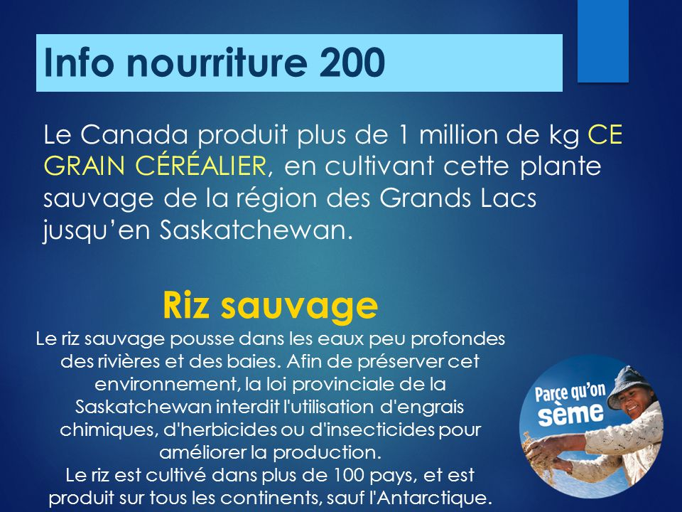 Info nourriture 200 Riz sauvage