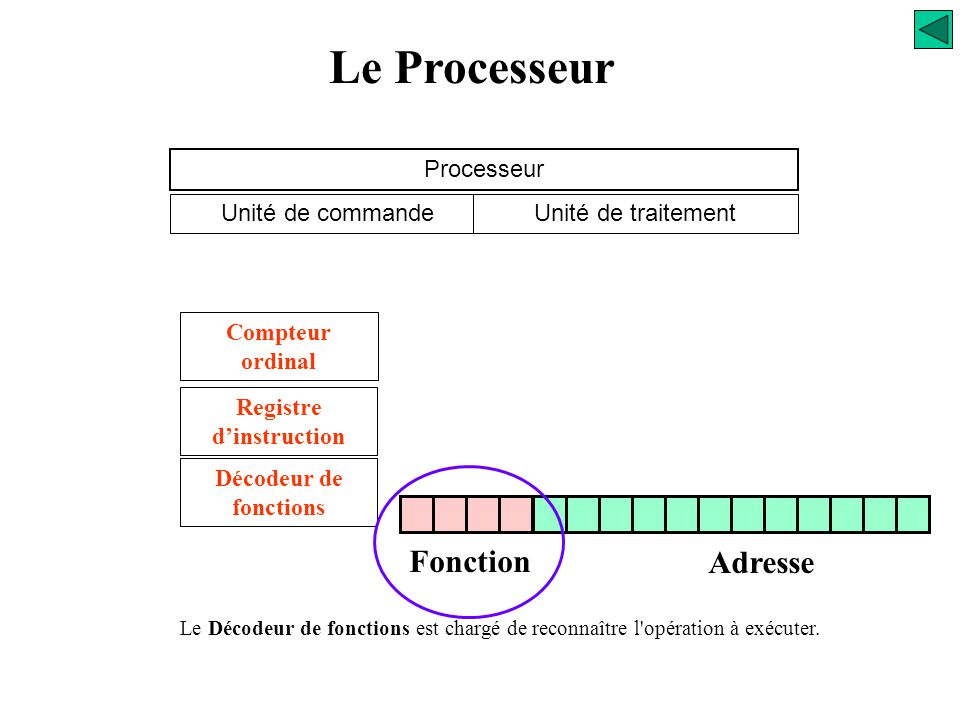 Le Processeur Fonction Adresse Processeur Unité de commande