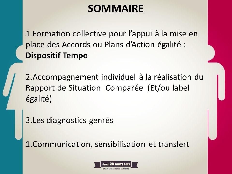 SOMMAIRE Formation collective pour l'appui à la mise en place des Accords ou Plans d'Action égalité : Dispositif Tempo.