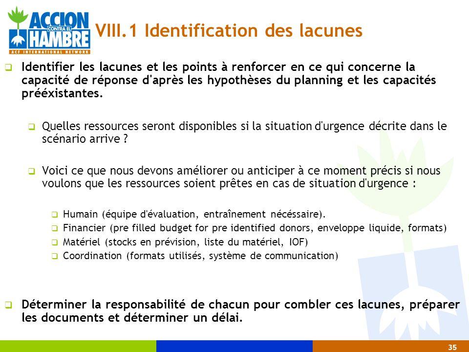 VIII.1 Identification des lacunes