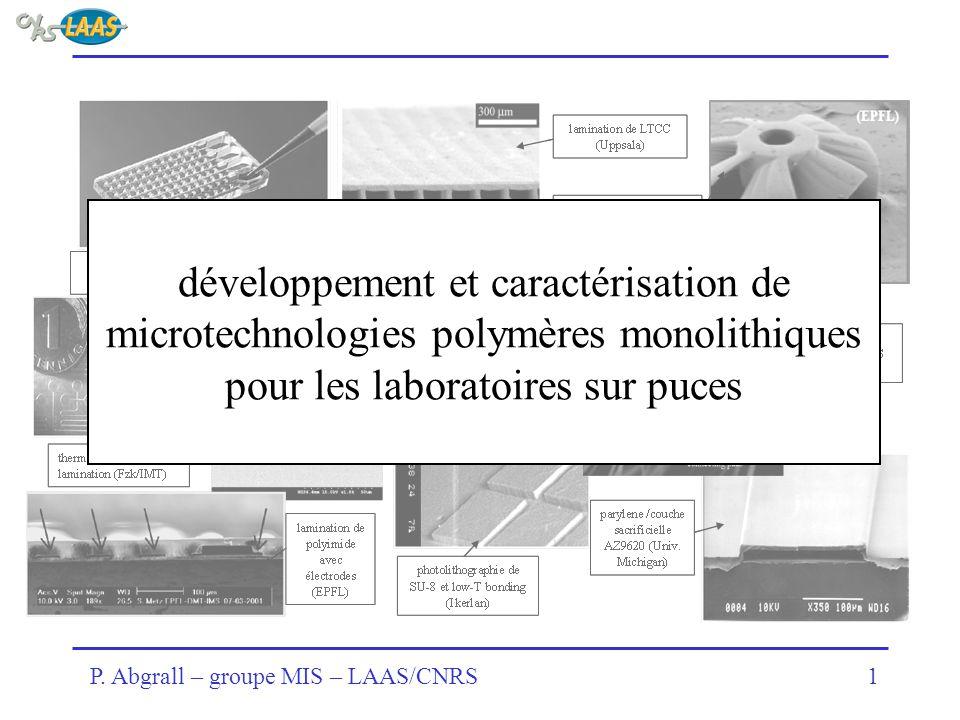 développement et caractérisation de microtechnologies polymères monolithiques pour les laboratoires sur puces