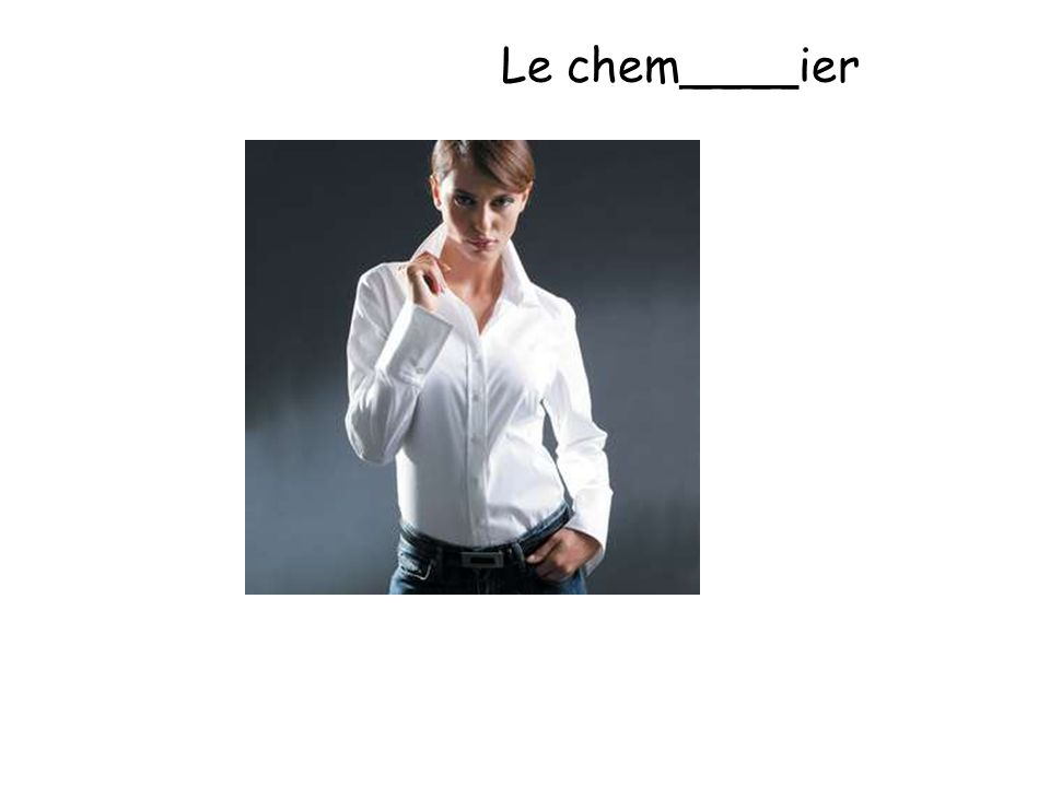 Le chem____ier