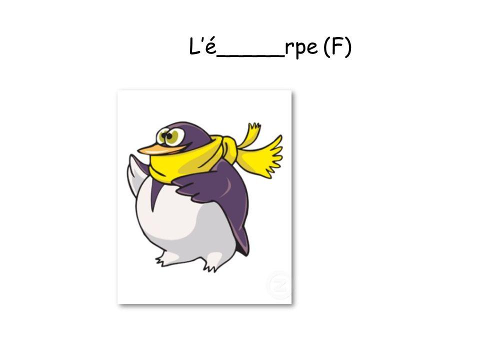 L'é_____rpe (F)