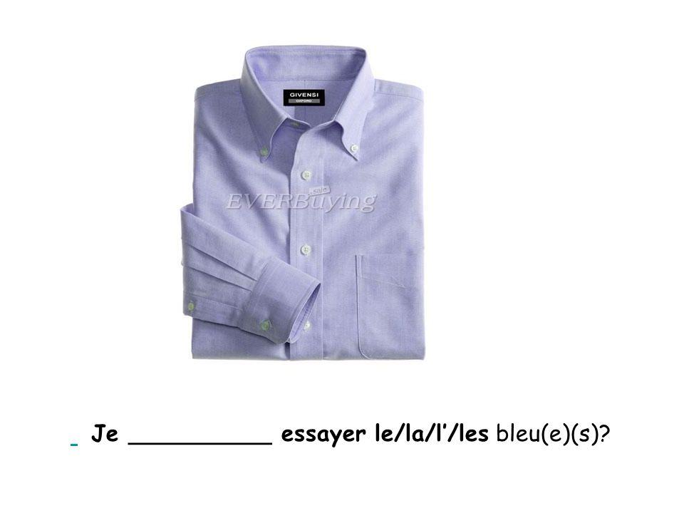 Je __________ essayer le/la/l'/les bleu(e)(s)