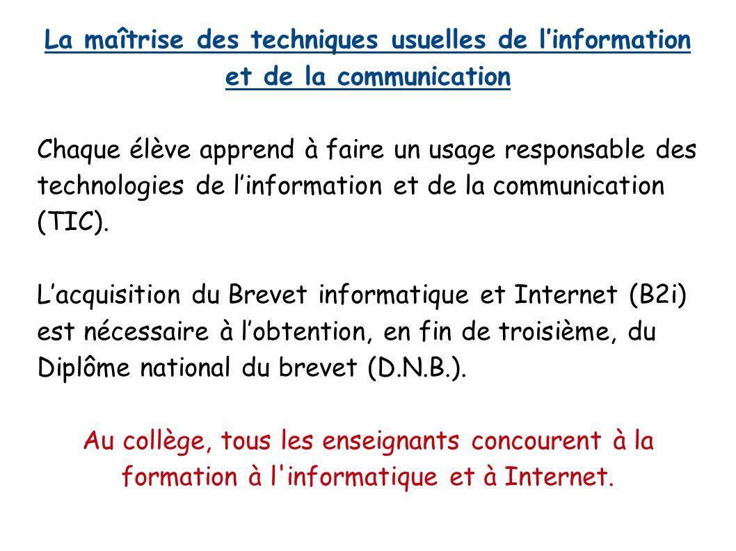 La maîtrise des techniques usuelles de l'information et de la communication