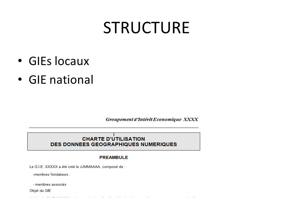STRUCTURE GIEs locaux GIE national