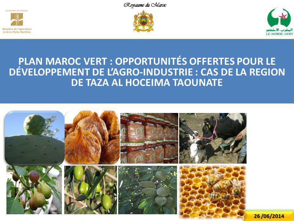 Royaume du Maroc PLAN MAROC VERT : Opportunités offertes pour le développement de l'agro-industrie : cas de la region de TAZA Al Hoceima Taounate.