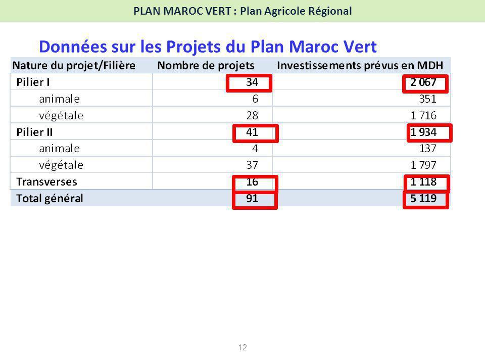 PLAN MAROC VERT : Plan Agricole Régional