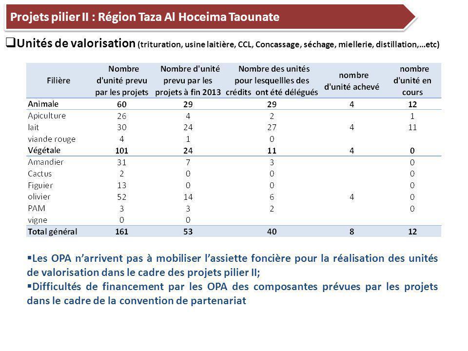 Projets pilier II : Région Taza Al Hoceima Taounate