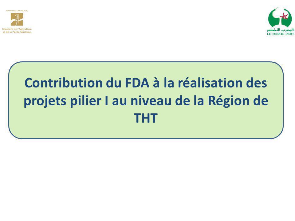 Contribution du FDA à la réalisation des projets pilier I au niveau de la Région de THT