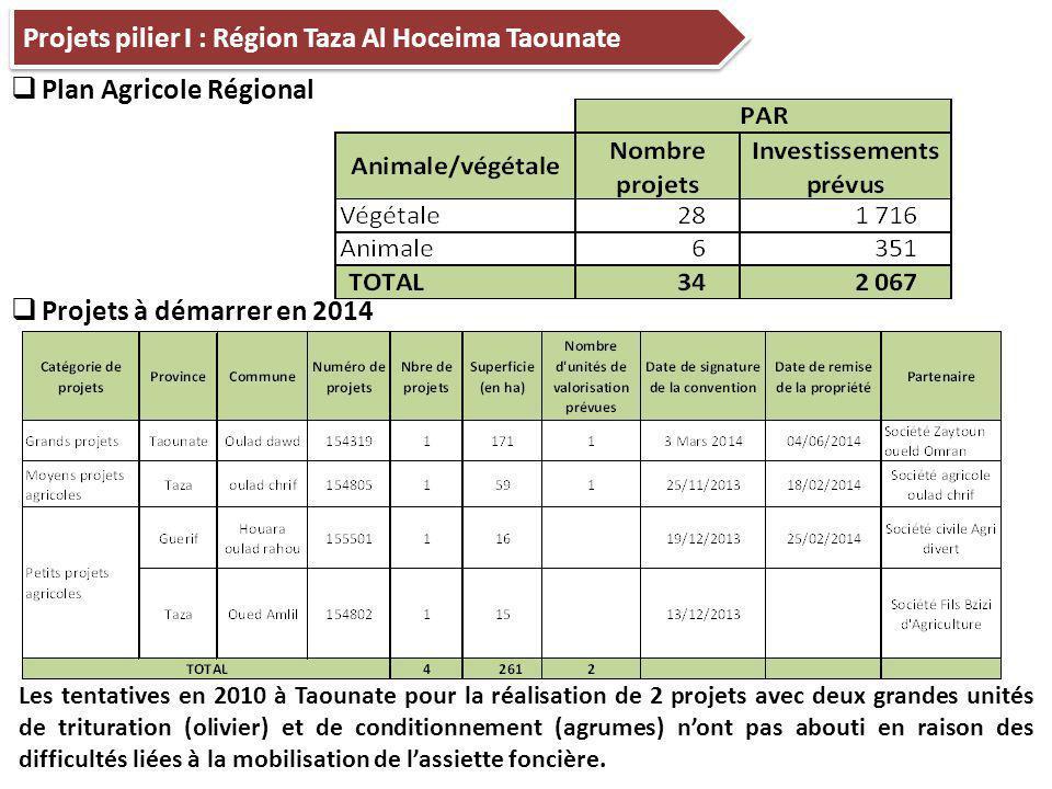 Projets pilier I : Région Taza Al Hoceima Taounate