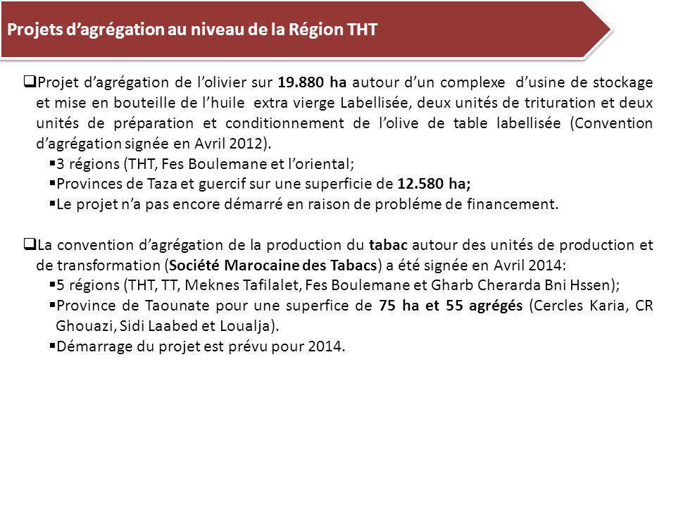 Projets d'agrégation au niveau de la Région THT