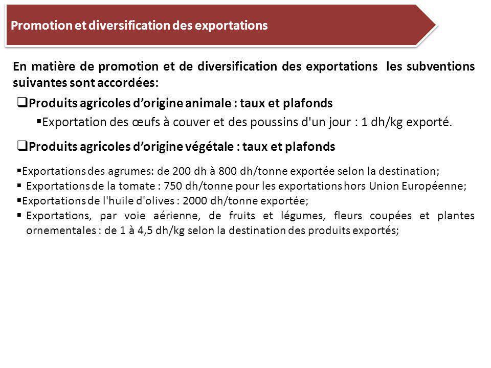 Promotion et diversification des exportations