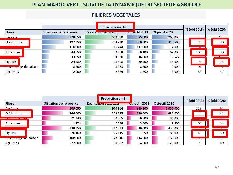 PLAN MAROC VERT : SUIVI DE LA DYNAMIQUE DU SECTEUR AGRICOLE