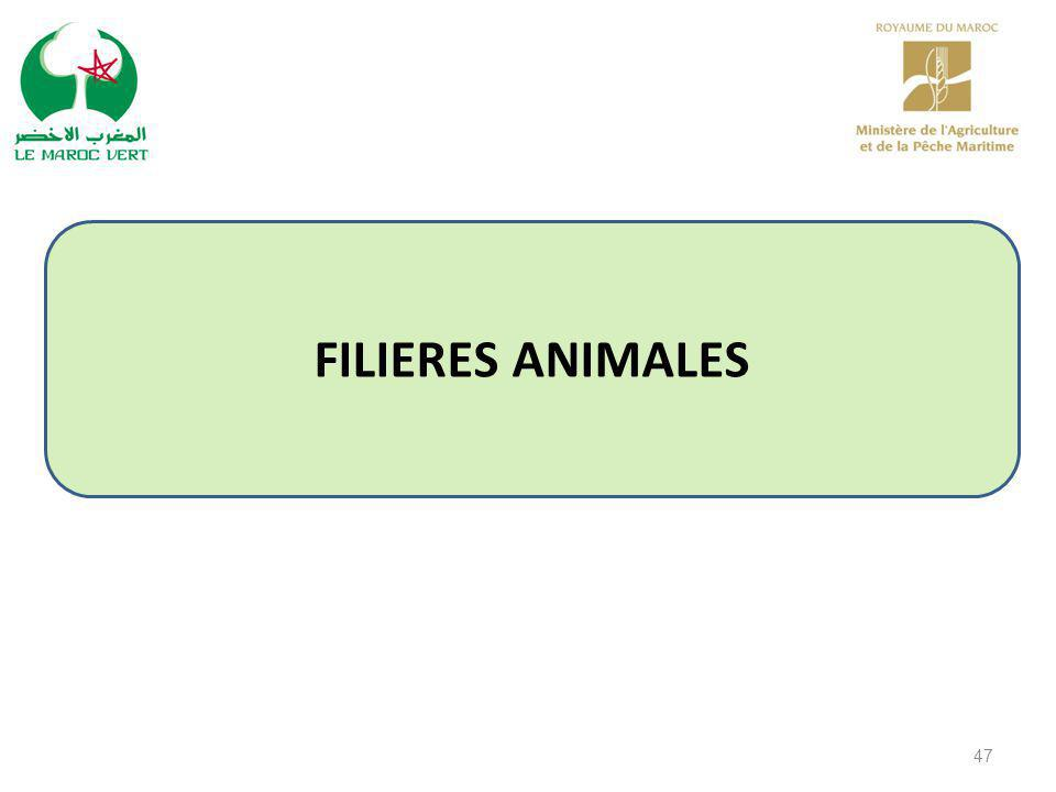 FILIERES ANIMALES