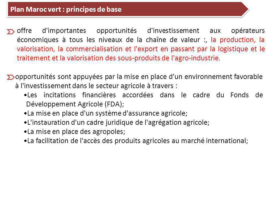 Plan Maroc vert : principes de base