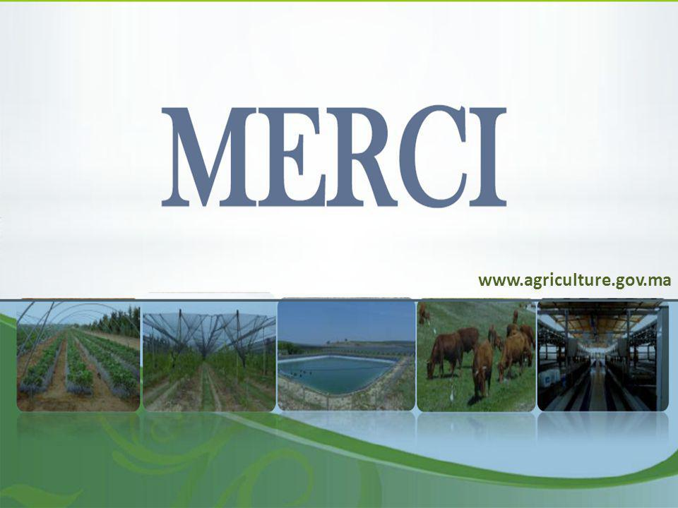 www.agriculture.gov.ma