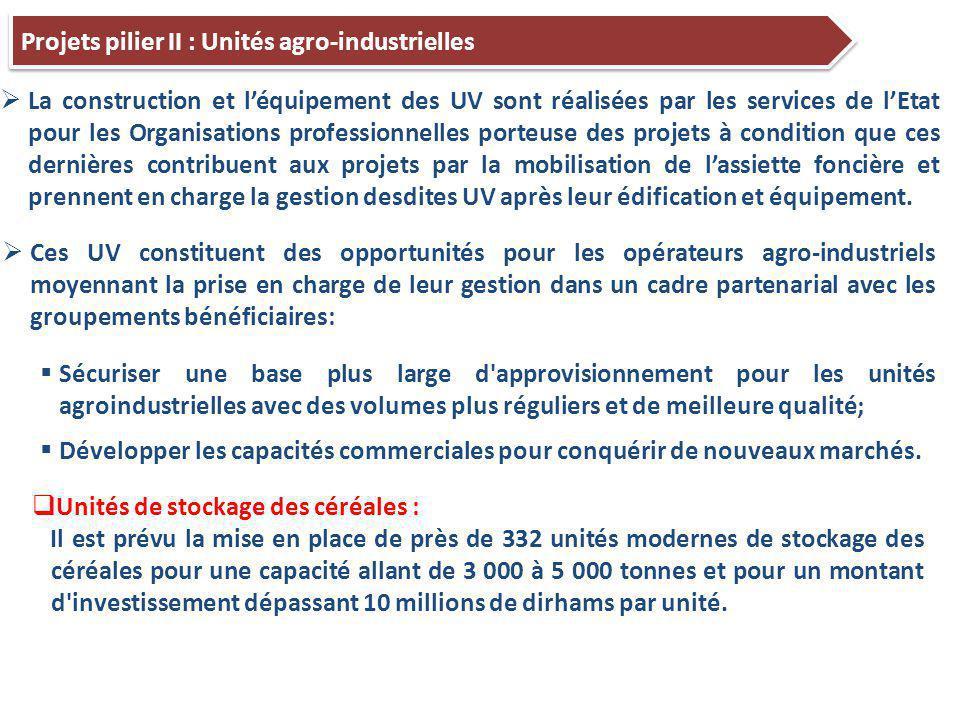 Projets pilier II : Unités agro-industrielles