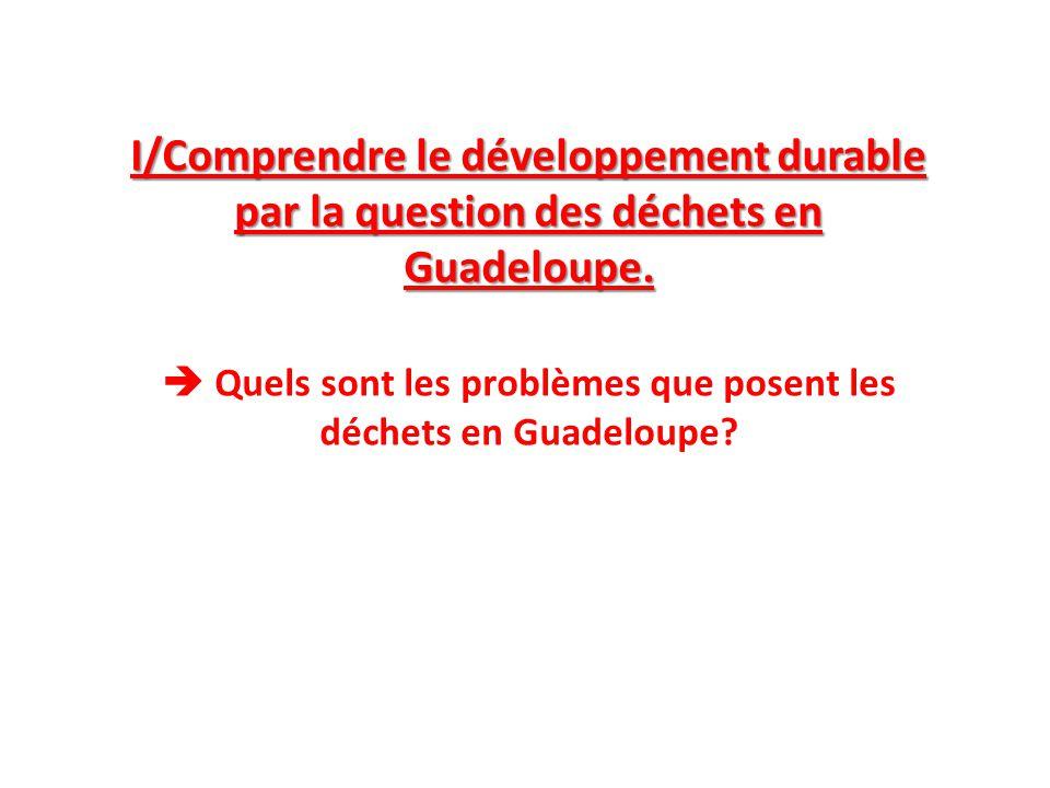  Quels sont les problèmes que posent les déchets en Guadeloupe