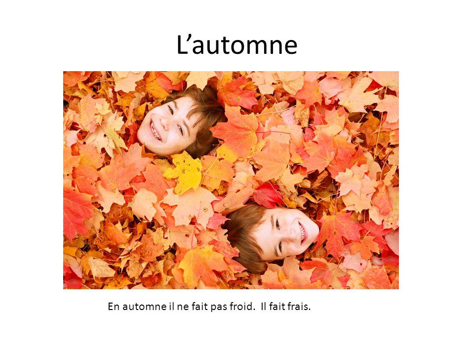 L'automne En automne il ne fait pas froid. Il fait frais.