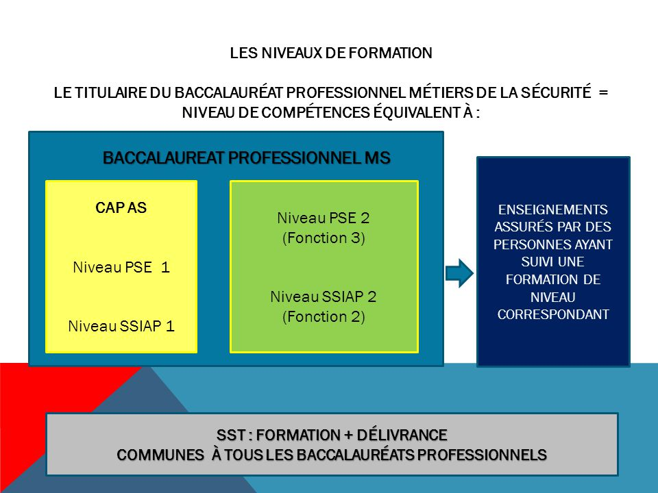 BACCALAUREAT PROFESSIONNEL MS