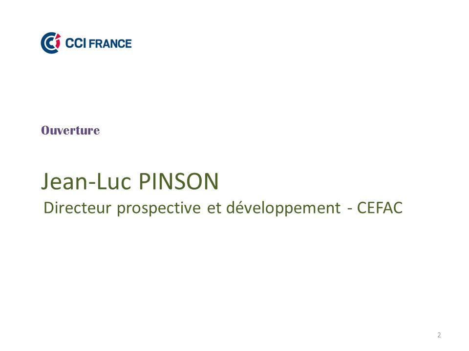 Jean-Luc PINSON Directeur prospective et développement - CEFAC