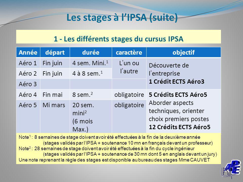 1 - Les différents stages du cursus IPSA