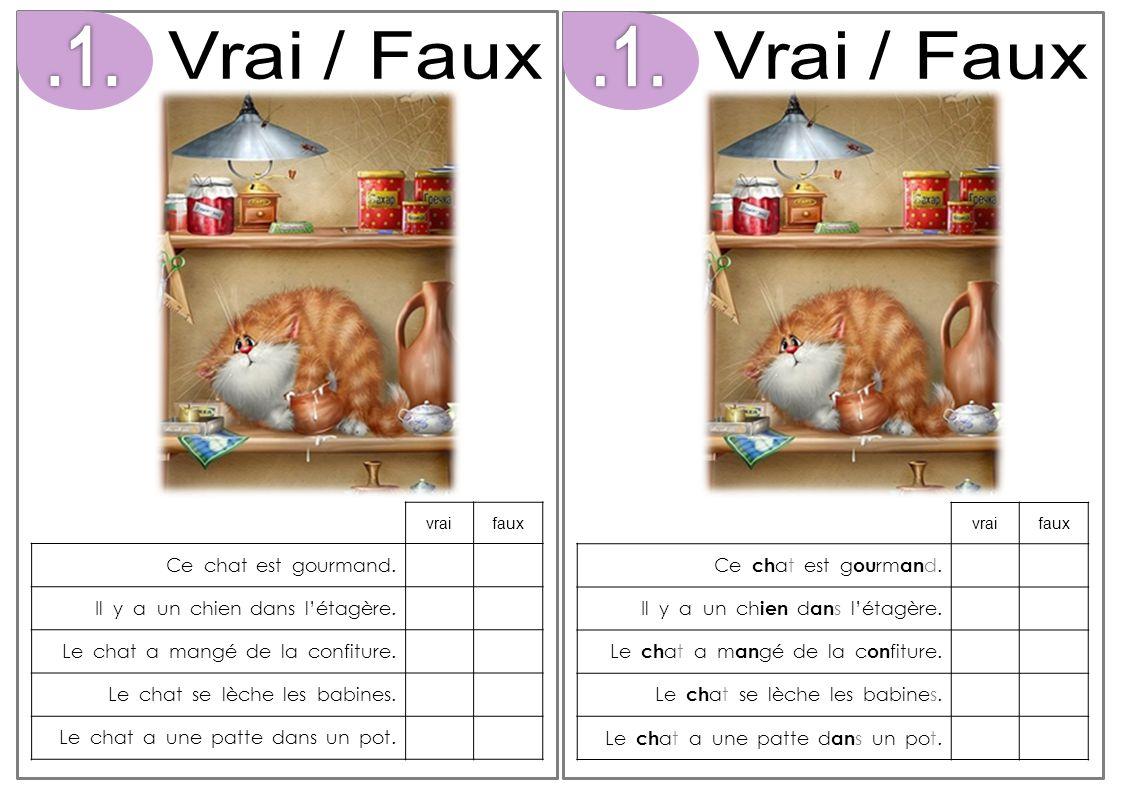 Vrai / Faux .1. Vrai / Faux .1. Ce chat est gourmand.