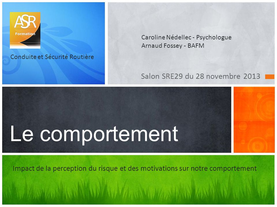 Le comportement Salon SRE29 du 28 novembre 2013