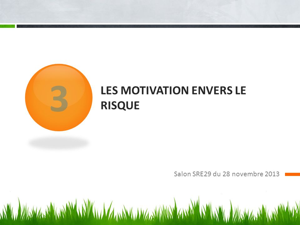Les motivation envers le risque