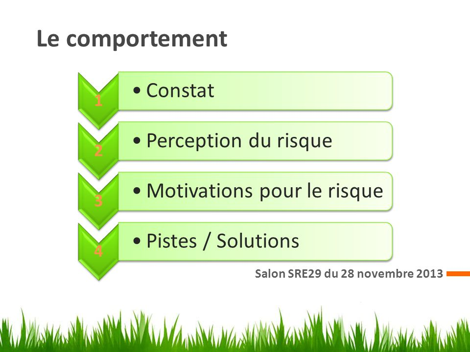 Le comportement Constat Perception du risque