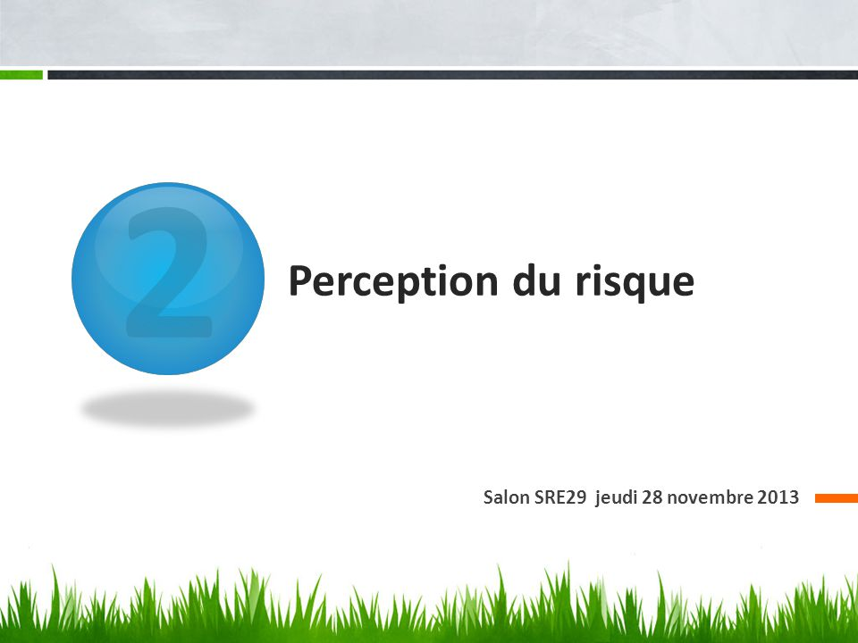 2 Perception du risque Salon SRE29 jeudi 28 novembre 2013