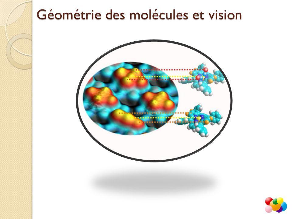 Géométrie des molécules et vision