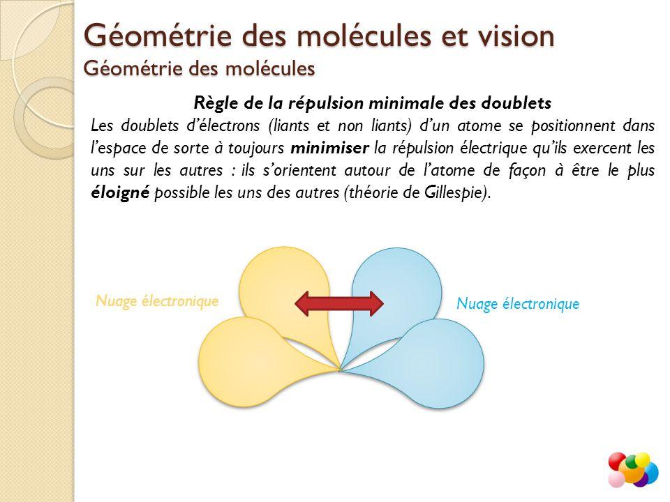 Géométrie des molécules et vision Géométrie des molécules