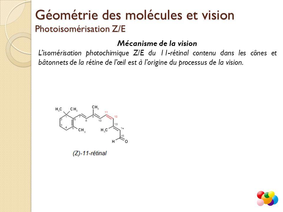 Géométrie des molécules et vision Photoisomérisation Z/E