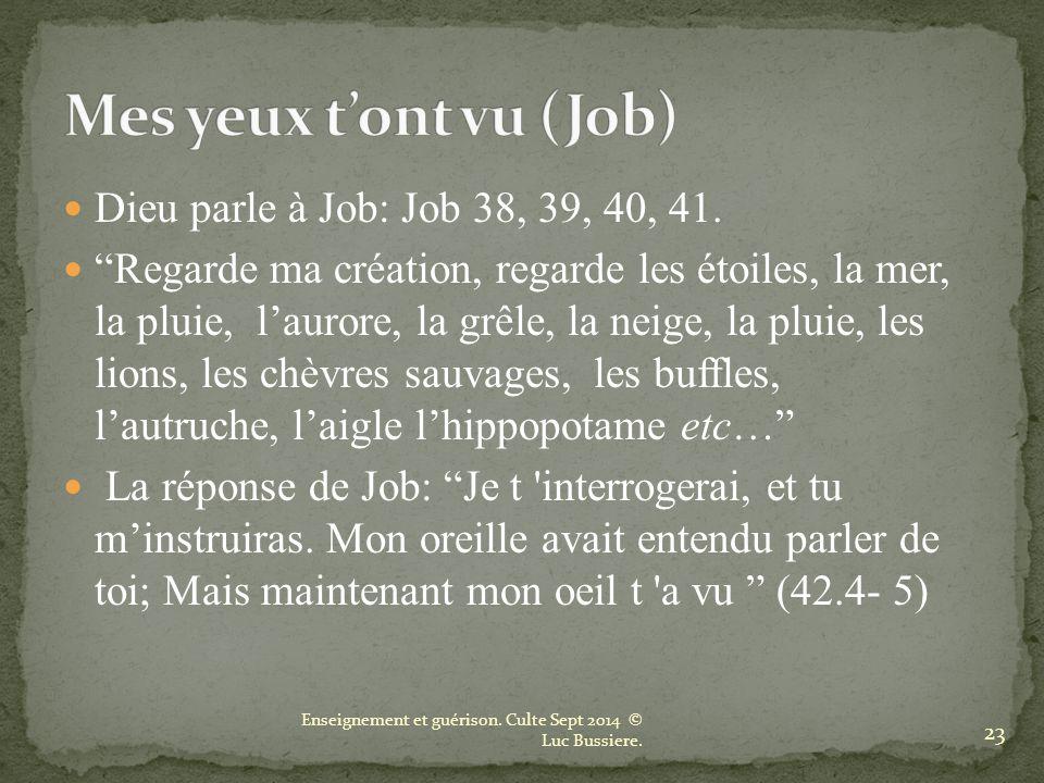 Mes yeux t'ont vu (Job) Dieu parle à Job: Job 38, 39, 40, 41.