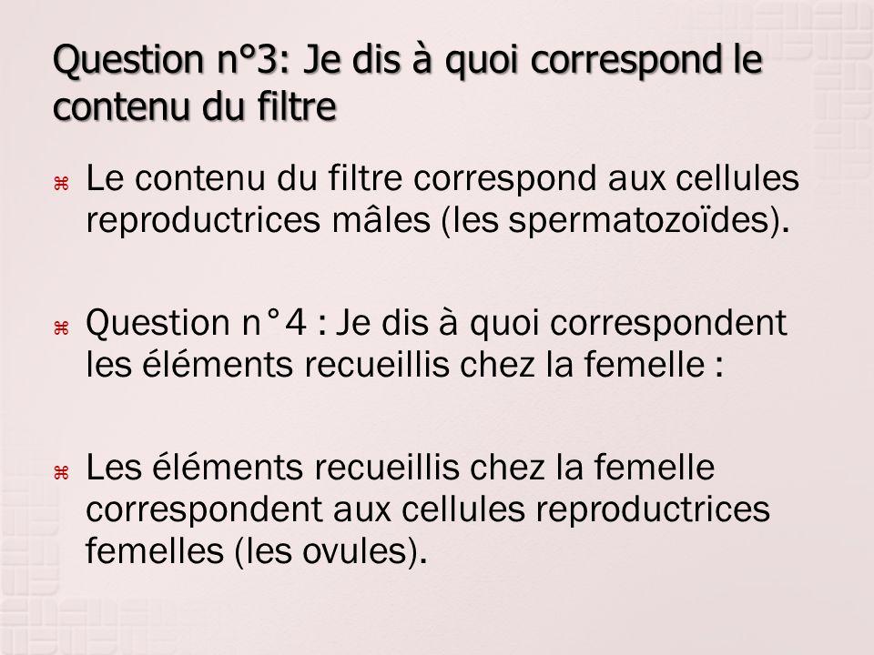 Question n°3: Je dis à quoi correspond le contenu du filtre