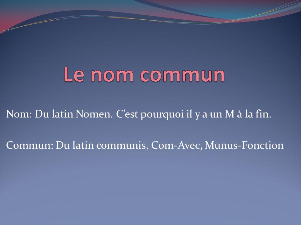 Le nom commun Nom: Du latin Nomen. C'est pourquoi il y a un M à la fin.