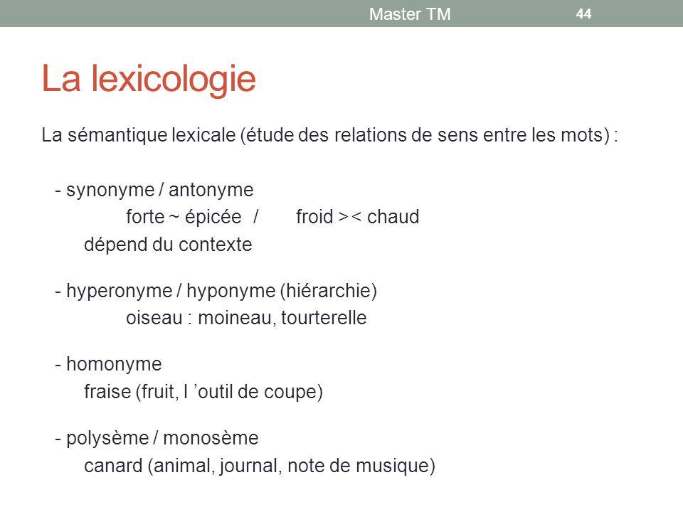 Master TM La lexicologie. La sémantique lexicale (étude des relations de sens entre les mots) : - synonyme / antonyme.