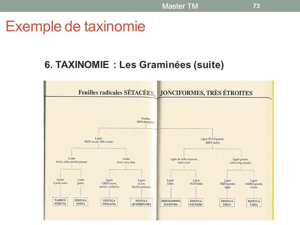Exemple de taxinomie 6. TAXINOMIE : Les Graminées (suite) Master TM