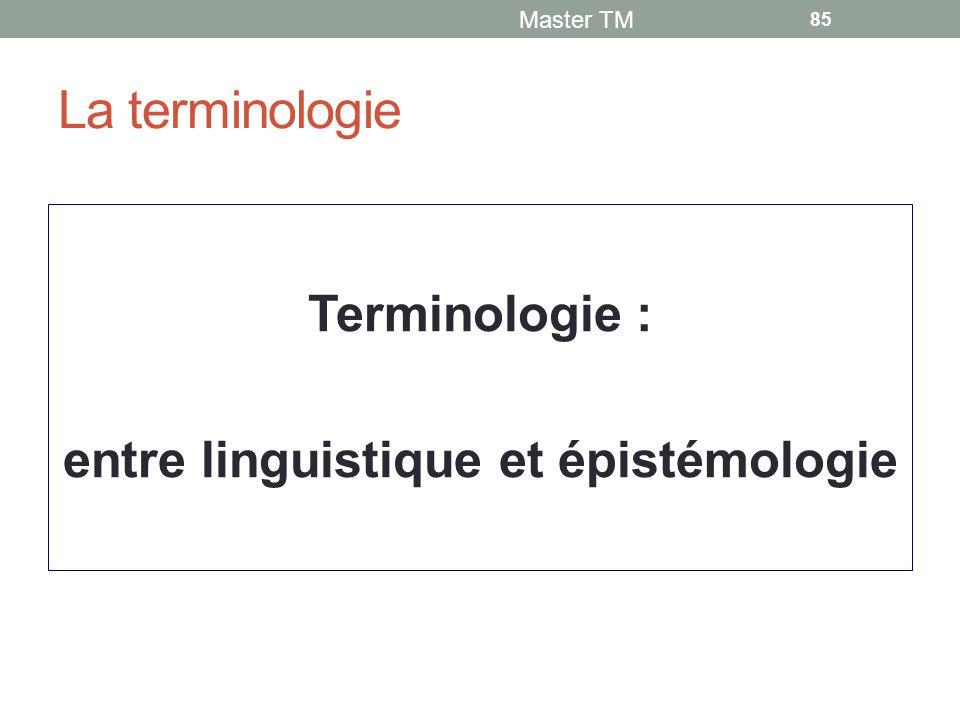 Terminologie : entre linguistique et épistémologie