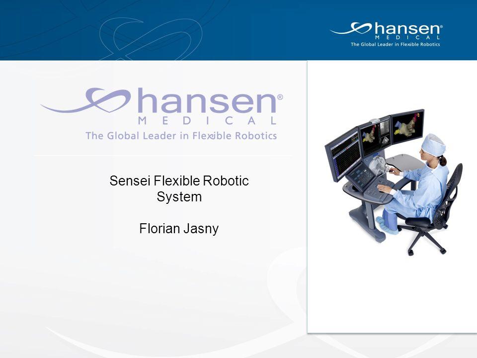Sensei Flexible Robotic System
