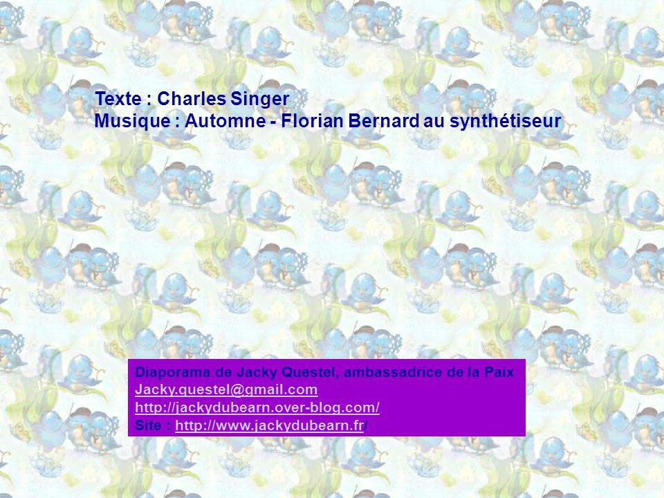 Musique : Automne - Florian Bernard au synthétiseur
